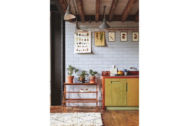 Vintage wall charts depicting fruits, vegetables and fungi in an industrial-style kitchen with metro tiles