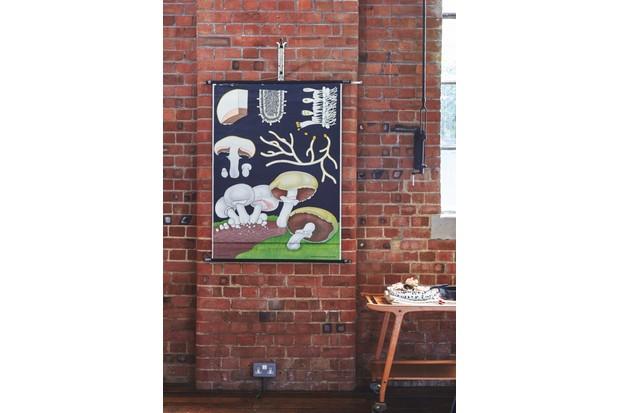 A vintage mushroom school chart on an exposed brick wall