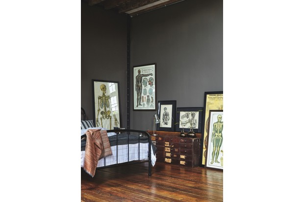 A collection of anatomical charts in a bedroom with a black bed and dark grey walls