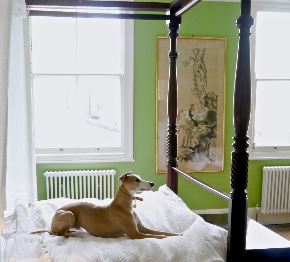 A whippet lies on an antique four-poster bed