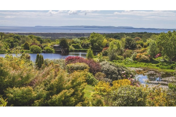 An image of a lake at Glenwhan Garden and Arboretum