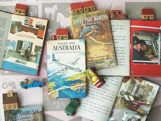 An image of a collection of ladybird books, including one on British birds