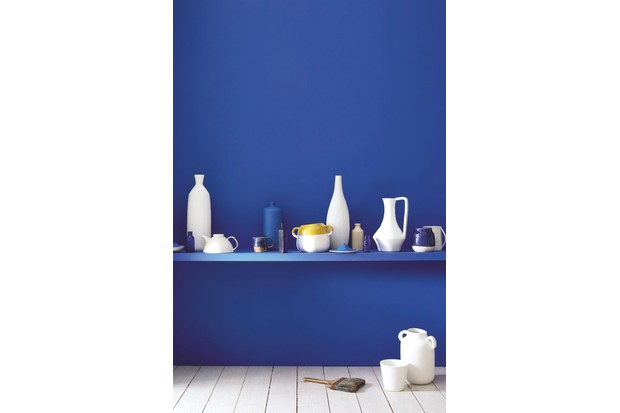 A wall painted in bright blue paint with a matching shelf. In the shelf is an array of contemporary blue, white and yellow ceramics