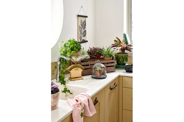 A wooden crate overflowing with plants on a white kitchen worktop.