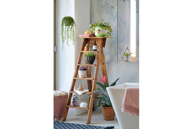 A vintage stepladder used to display small succulents and beauty products in a bathroom.