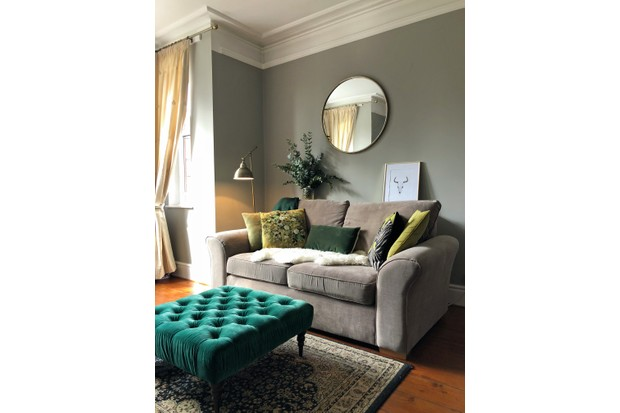 A grey velvet sofa against a sage green wall and a large vase of eucalyptus
