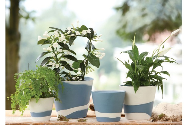 Wedgwood's Burlington pots filled with fresh foliage