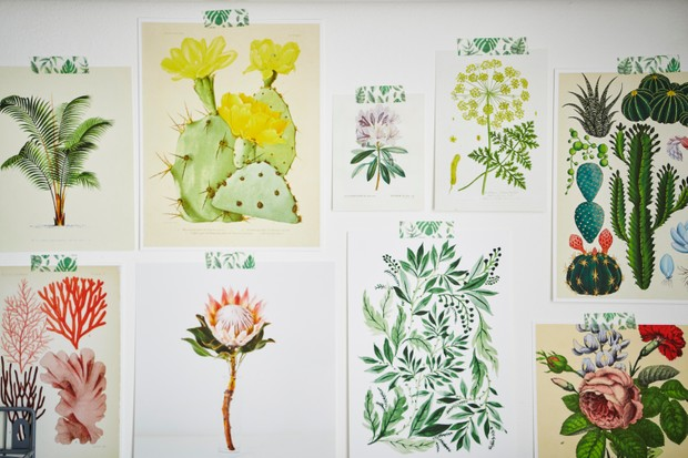 A selection of vintage botanical prints which provide inspiration for Jessica's designs