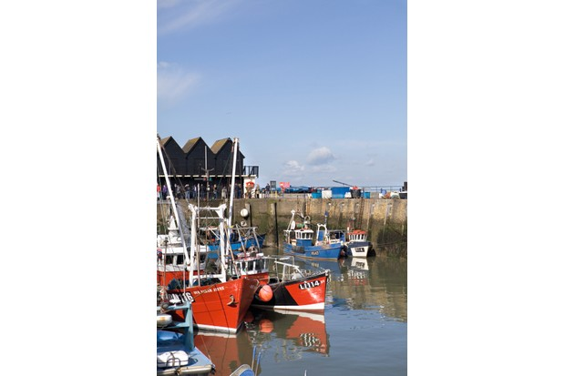 Boats bobbing in Whitstable harbour