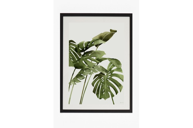 French Connection Large Framed Tropical Leaf Print