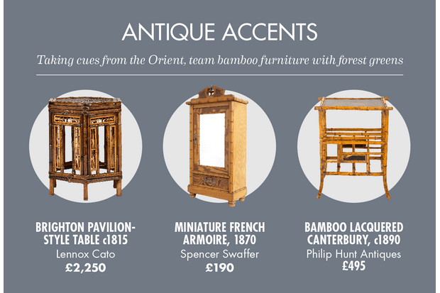 A selection of cane antiques