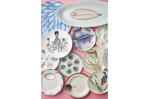 An array of sea-inspired plates