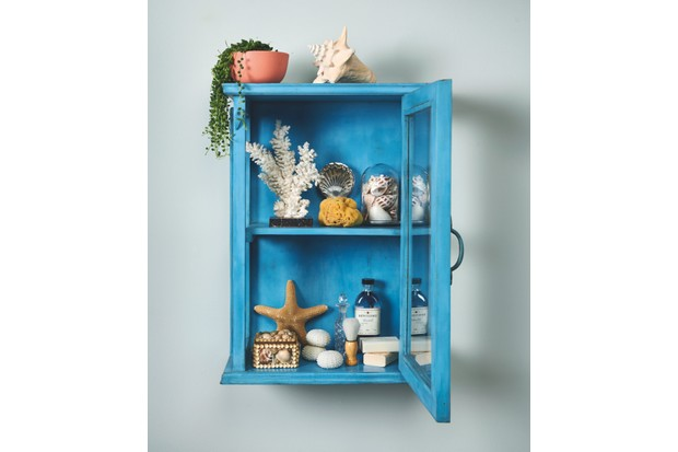 Painted blue cabinet of curiosities