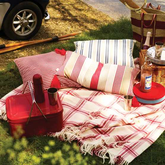 The best picnic accessories for summer 2021. Image: Polly Wreford