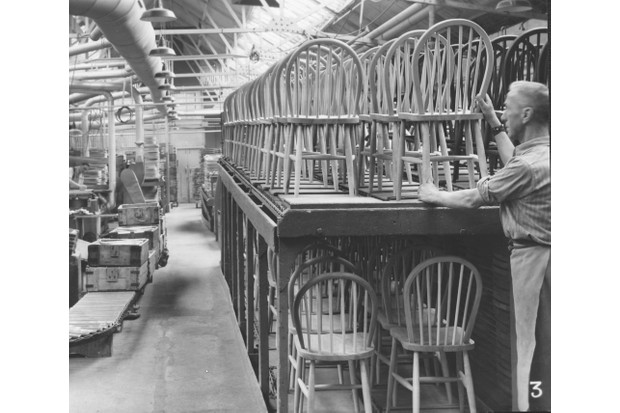 The production line of dining chairs in the ercol chair shop
