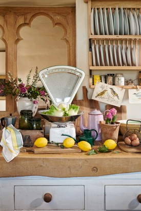 Rustic birds & botanicals country kitchen