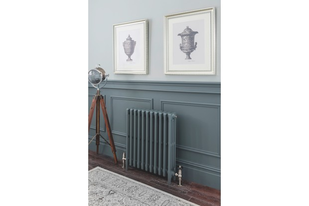 Aston radiator (painted in Downpipe by Farrow & Ball), from £670.60 to £2,339.10, The Radiator Company