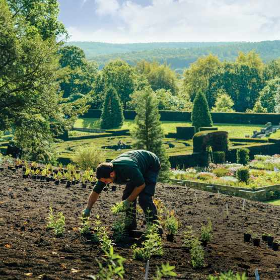 A gardener at Chatsworth planting and maintaining the gardens