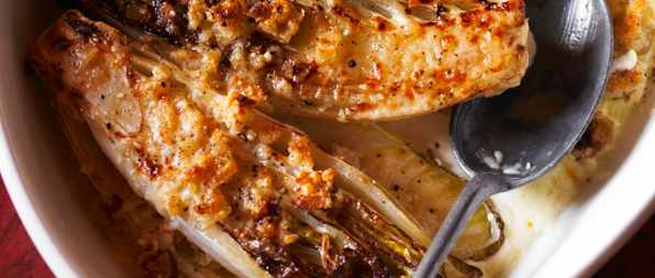 Chicory Gratin Recipe