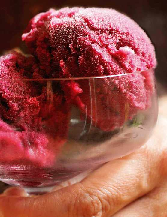 Red Wine Sorbet Recipe with Grapes