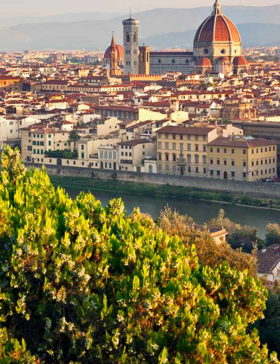 Best Florence Restaurants