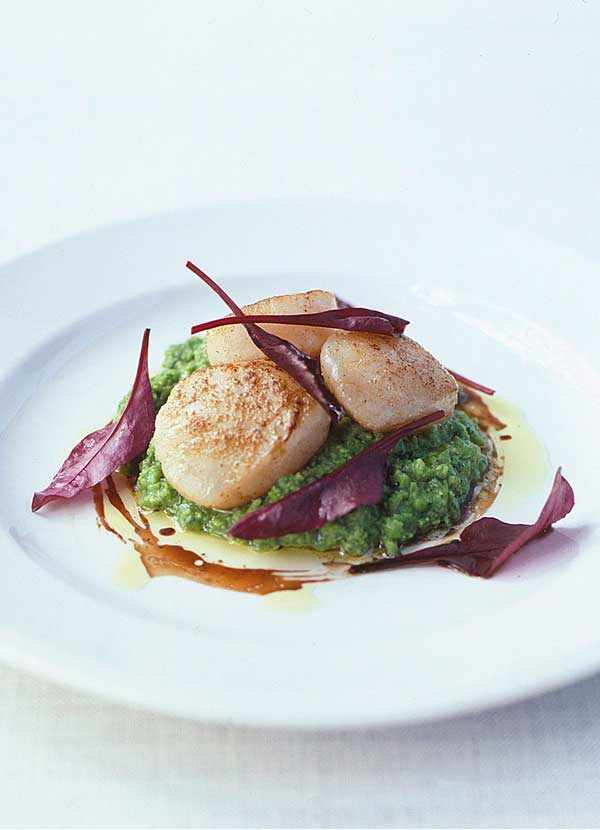 Scallops With Pea and Mint Purée