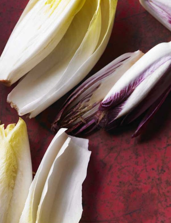 Chicory Recipe with Walnuts and Gorgonzola