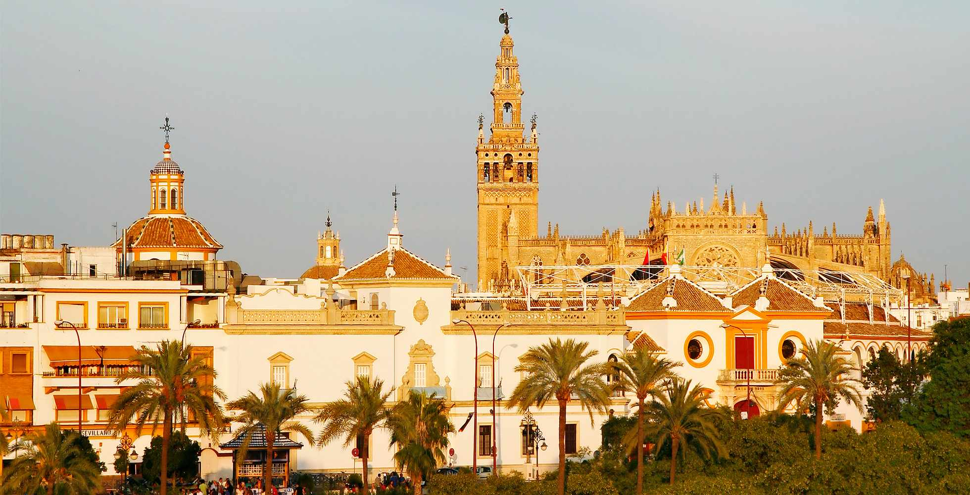 Seville, Spain Foodie Guide: Where Locals eat and Drink