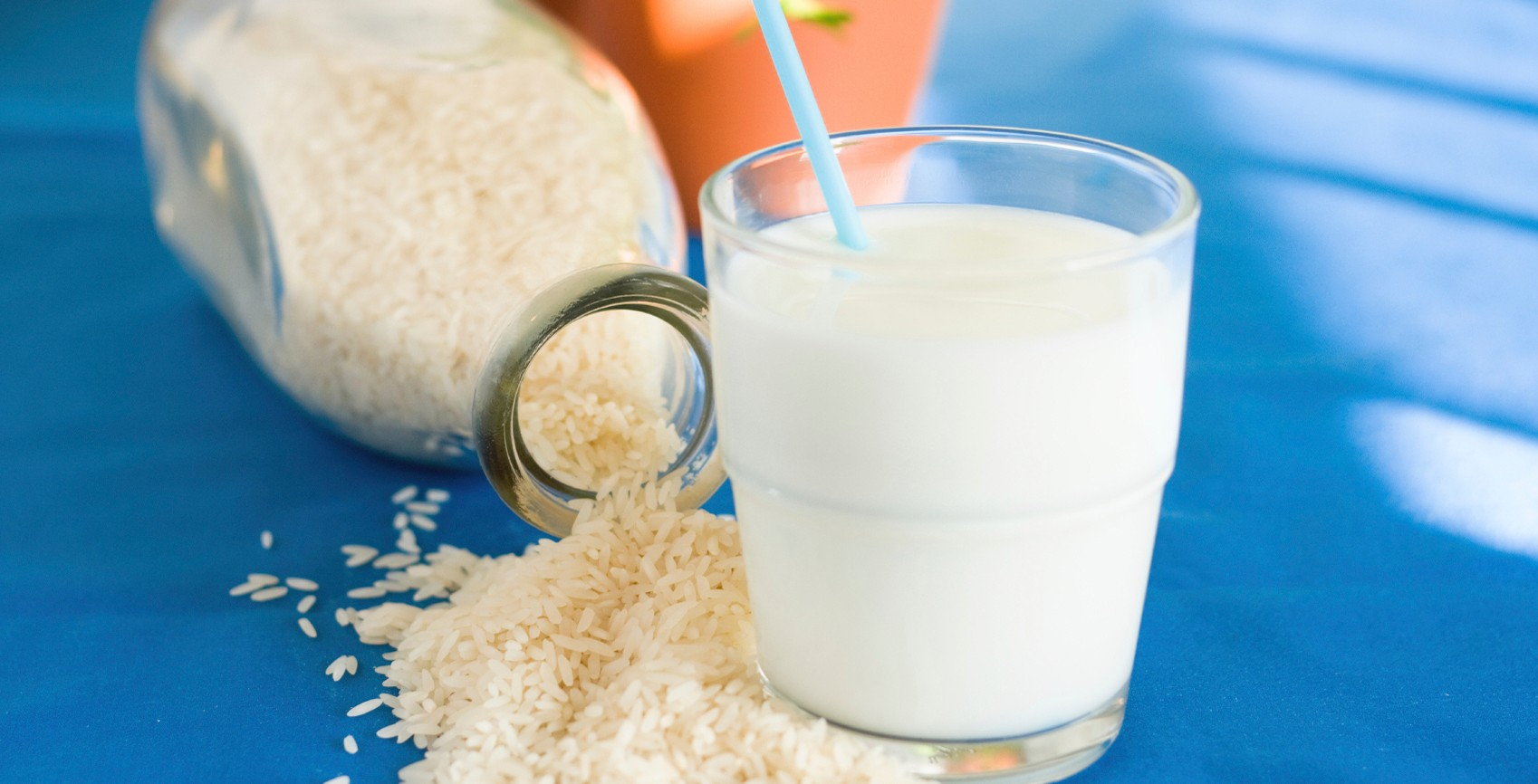 Lactose Free Milk Alternatives