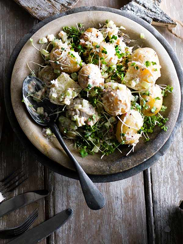 Potato Salad Recipe With Celery and Mustard