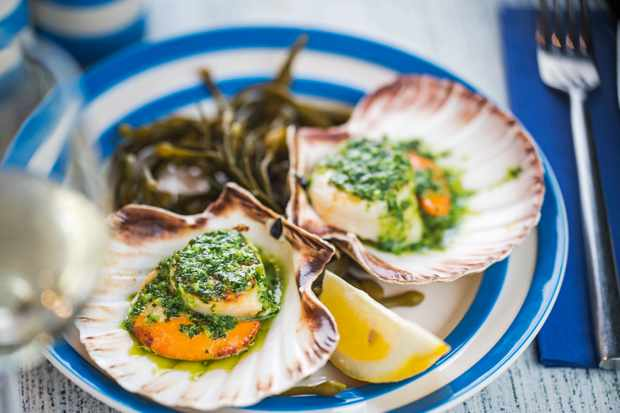 A blue and white plate topped with two scallops in their shells with green sauce on top