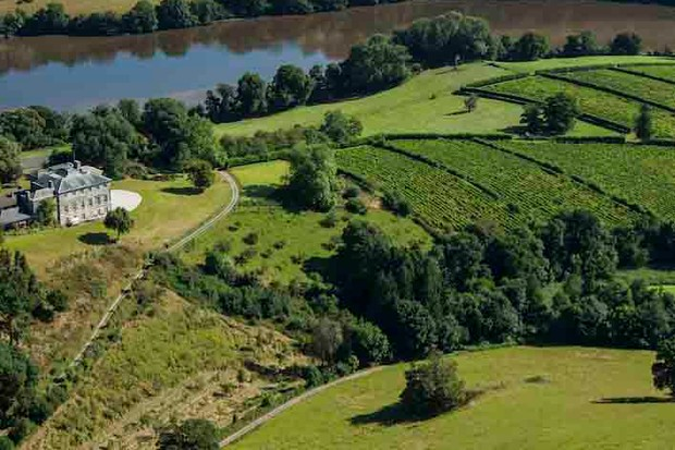 Green fields and a river bend at Sharpham Estate Devon