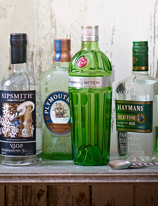 Best Gin Guide and Gin Drinks