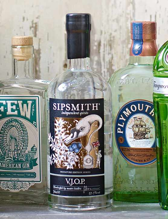 Best British Gins