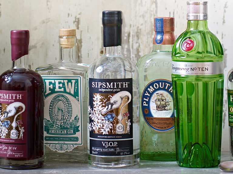 Which gin should you drink tonight?