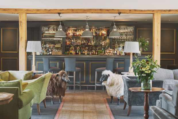 A large bar with wooden floors, sheep statues and chairs