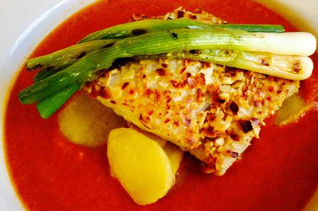 A plate of white hake with roast tomato sauce and charred spring onions at The Dolaucothi Arms, Carmarthenshire Look out