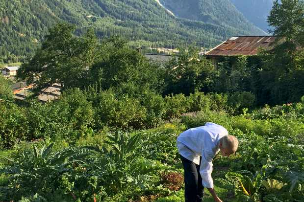 Denis Carrier in organic kitchen garden