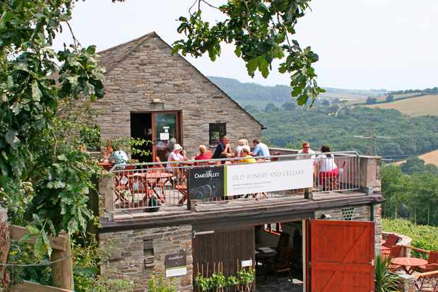 A terrace looking out to the valley at Camel Valley Vineyard, Cornwall