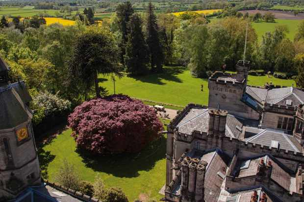 Hampton Manor Hotel castle-like building with a bright green lawn surrounded by trees