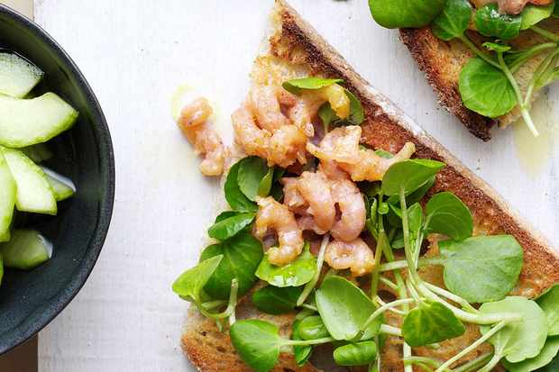 Potted shrimp on toast with pickled cucumber