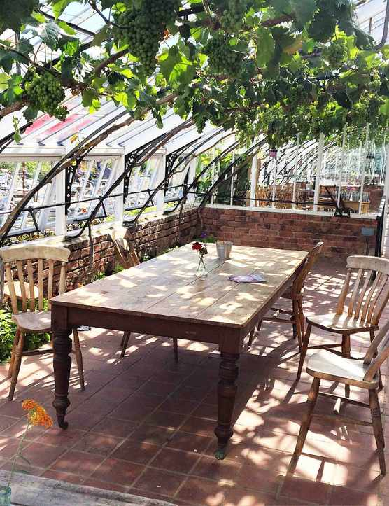 A large wooden table in a sun-dappled greenhouse with greenery on the roof