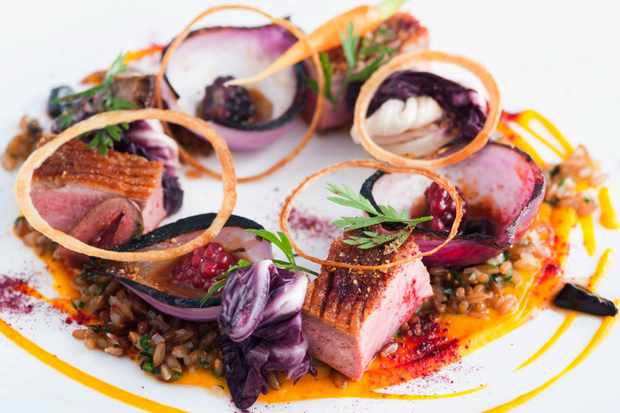 A vividly purple plate of fine-dining food at Llangoed Hall, Brecon, Wales with charred onion shells, spelt, thin onion rings and red cabbage