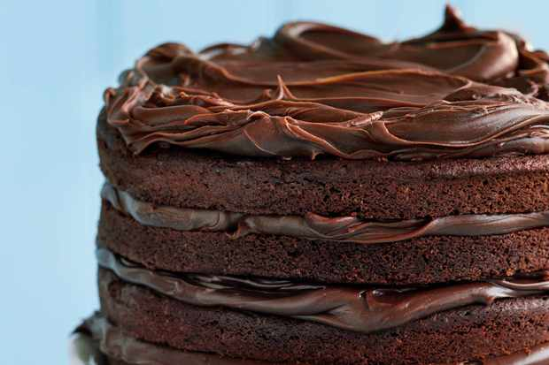 22 Best Chocolate Cake Recipes And How To Make Chocolate Cake