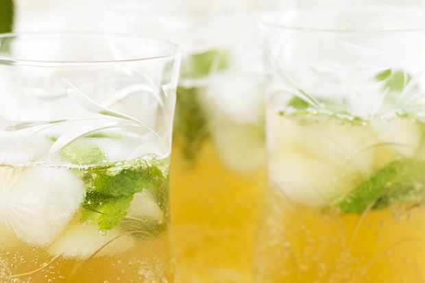 Iced mint and apple tea