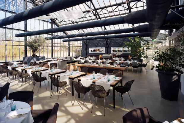 Take a freshly prepared lunch in a unique greenhouse in Frankendael Park