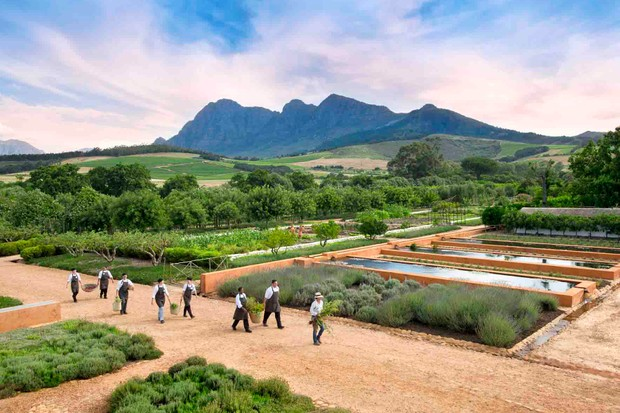 men collecting vegetables in a large green landscaped garden with mountains in the background