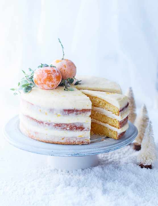 Gluten Free Christmas Cake Recipe With Yoghurt and Clementine