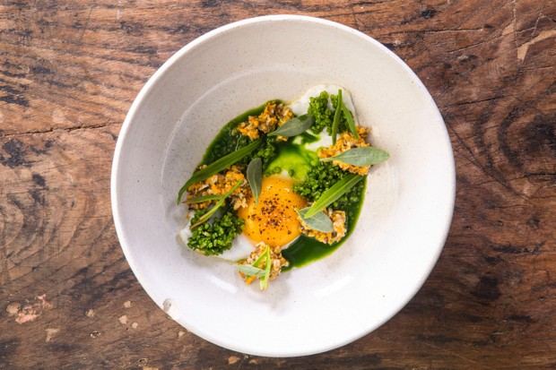 Fried duck egg with chopped mussels and parsley