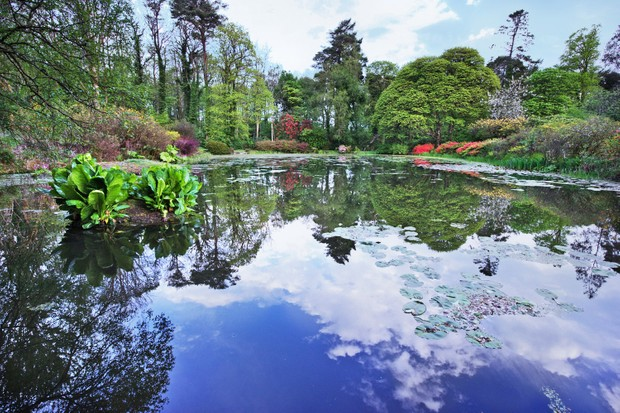 A view of the pond at Glenapp Castle, Scotland